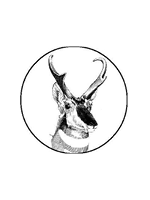 American Society of Mammalogists Logo